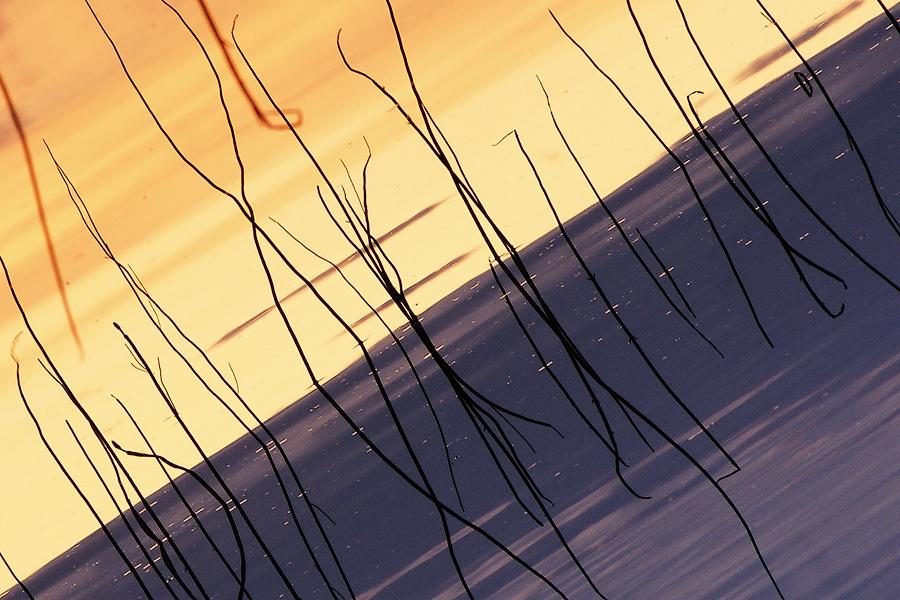 Карельская абстракция