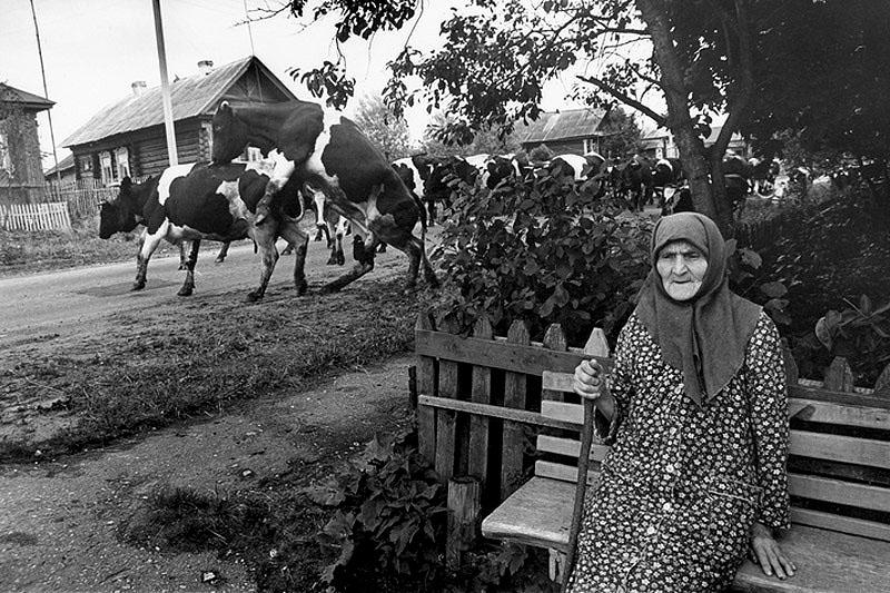 На сельской улице 1995 г.