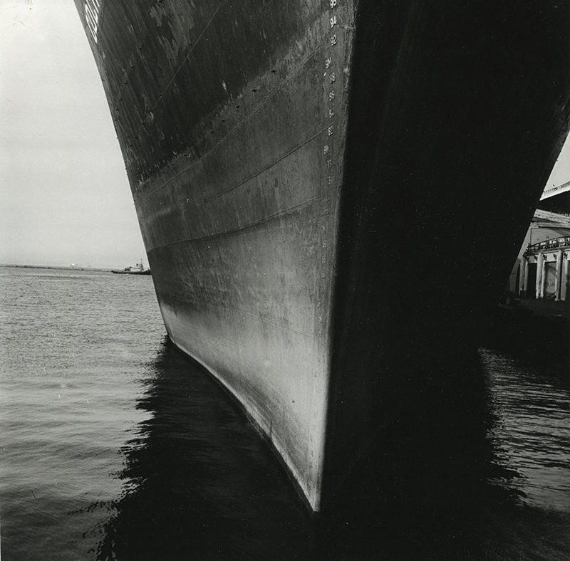 Фото: Вячеслав Тарновецкий