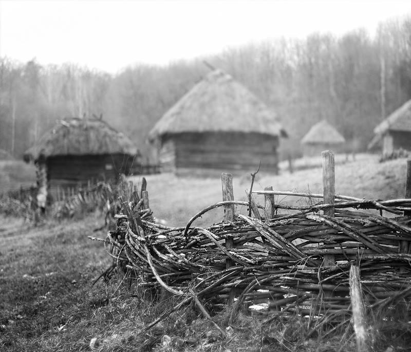 Название серии:  «Весенние зарисовки» Название фотоработы:  «Плетеный забор» Место съёмки: Украина, Киев Дата съёмки: 2011