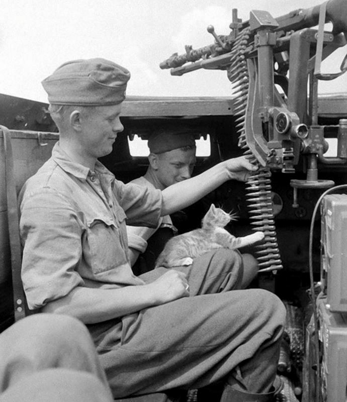 Солдат дивизии «Великая Германия» (Großdeutschland) играет лентой пулемета MG-34 с кошкой в боевом отделении бронетранспортера Sd.Kfz. 250/1 Ausf. A под Воронежем. 16.07.1942
