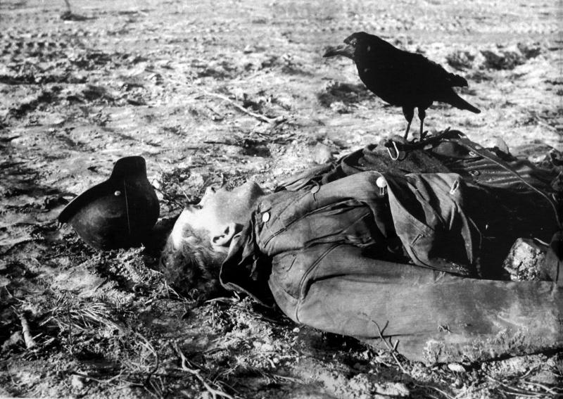 Ворон, сидящий на теле убитого немецкого солдата.