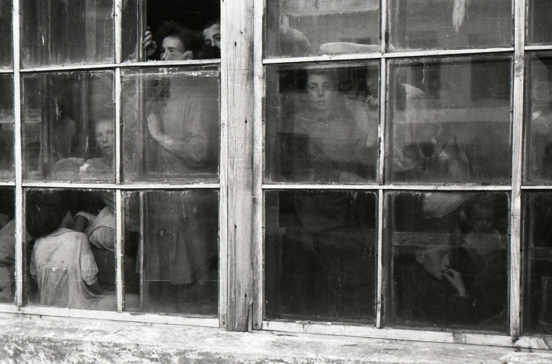 Еврейские, польские и украинские женщины и дети, запертые в теплице в ожидании своей участи. Они были расстреляны немцами на следующий день. Всего в конце августа 1941 у Дома Красной Армии Новоград-Волынска было расстреляно 700 мирных жителей, включая женщин и детей.