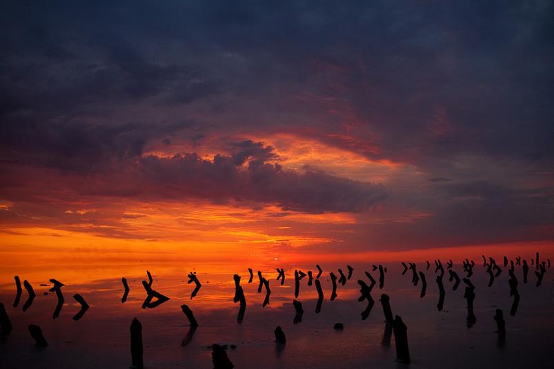 Фото: Владимир Сурков