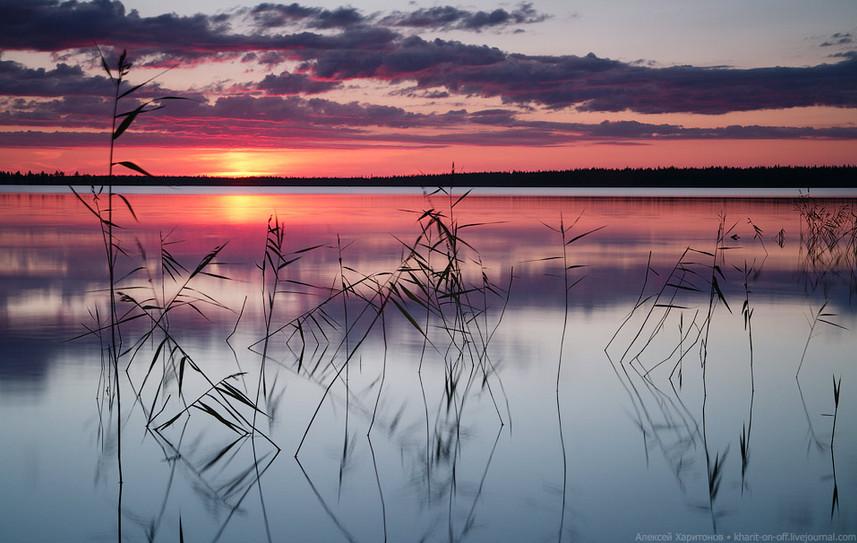 «Безмятежность», Энгозеро, Карелия. Автор – Алексей Харитонов