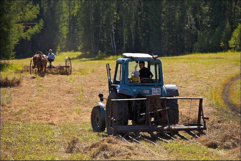 На полях староверы еще пользуются архаичными приспособлениями, но есть уже и современные тракторы. Верхний Шивей
