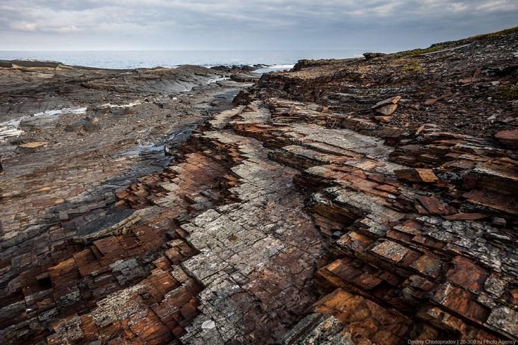 Природа Рыбачьего полуострова. Фото Дмитрия Чистопрудова