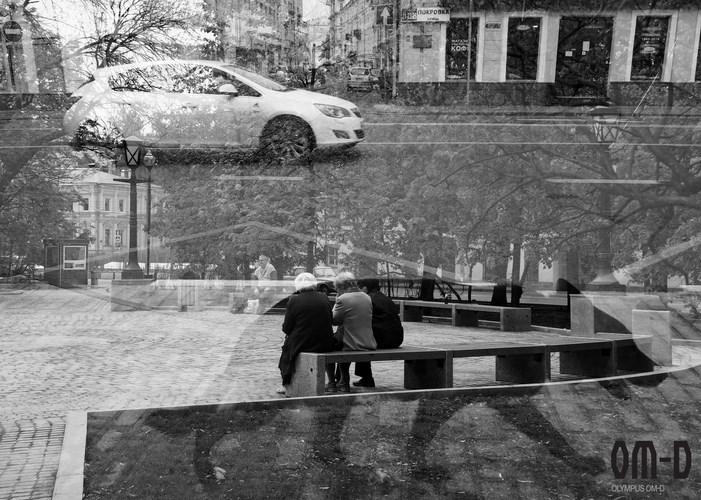 «Столичные обитатели» Автор - Елизарова Екатерина