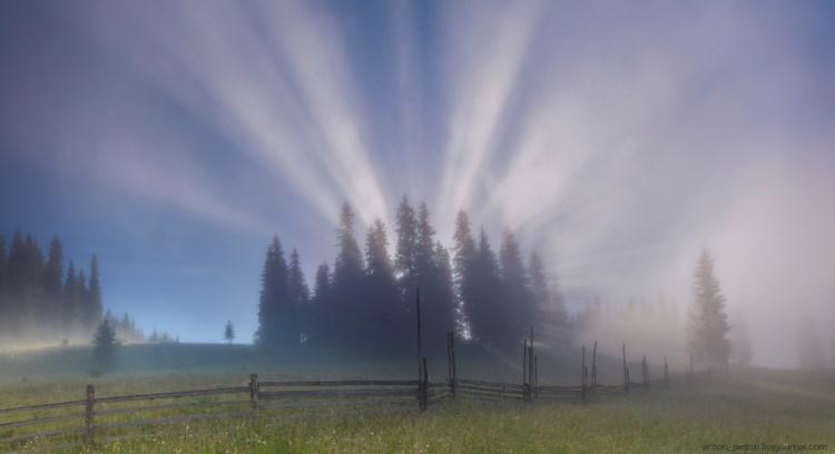 Туманные пейзажи. Фото: Антон Петрусь