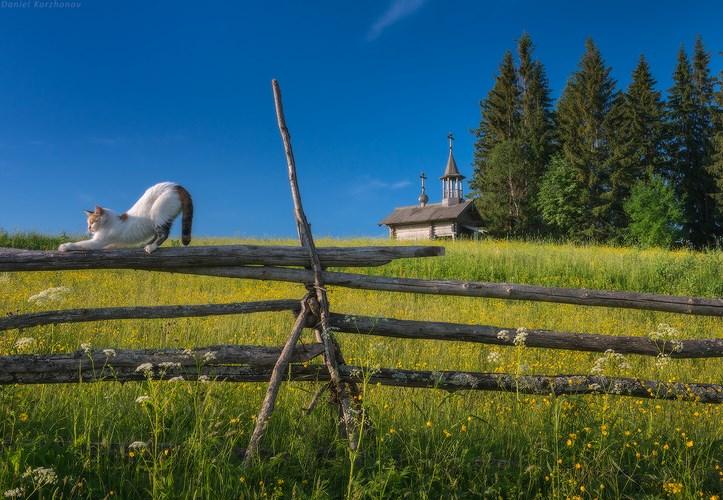 Пейзаж, Вершинино, Кенозеро. Фото Даниила Коржонова