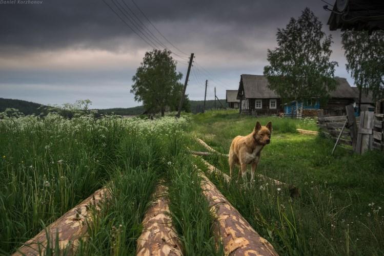 Деревне Зехново, Кенозеро. Фото Даниила Коржонова
