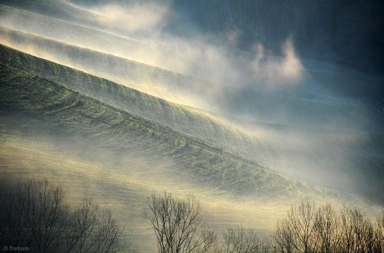Туманные пейзажи. Фото: Barbara