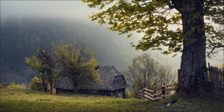 Туманные пейзажи. Фото: Влад Соколовский
