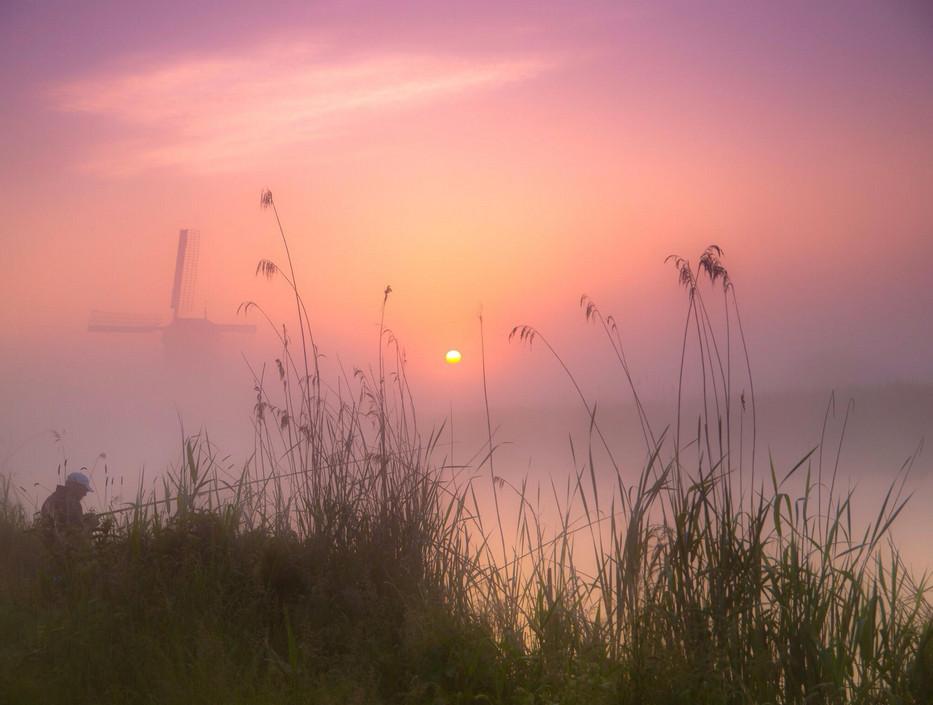 Пейзажи с мельницами. Фото: Erik de Jong