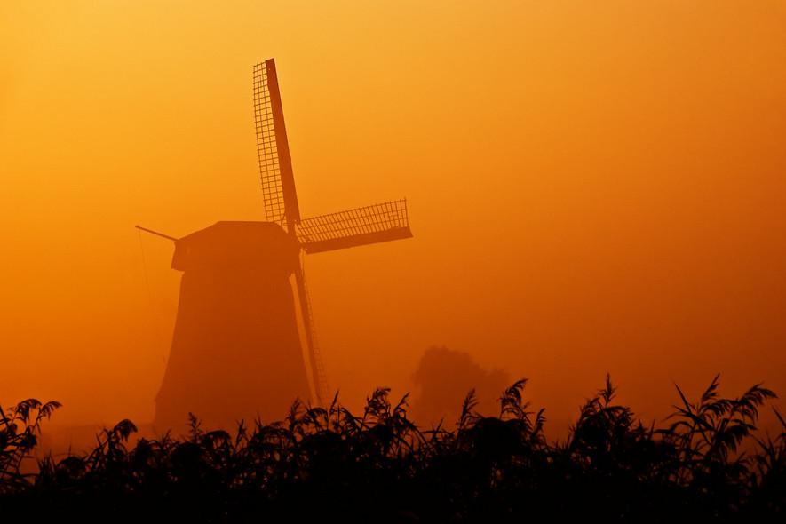 Пейзажи с мельницами. Фото: Allard Schager