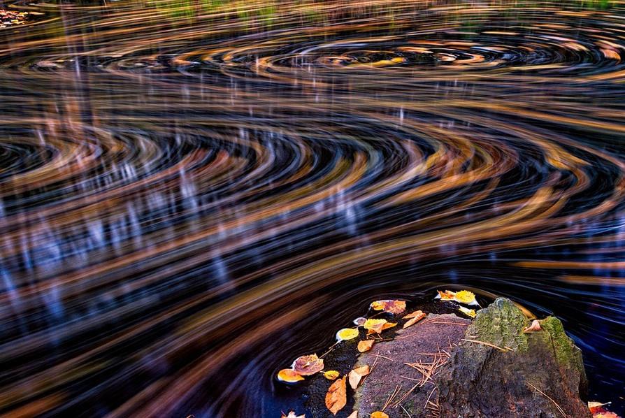 Осенняя природа. Фото: Jeff Sinon