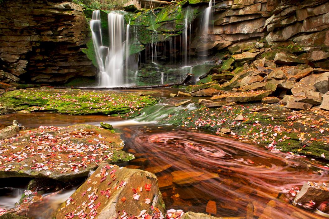 Осенняя природа. Фото: JP Diroll