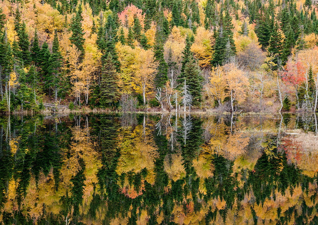 Китай, национальны парк Цзючжайгоу. Фото: Сергей Кузецов