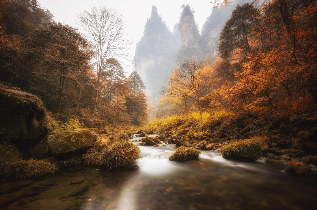 Национальный парк Zhangjiajie. Фото: Ibrahim Albeshari