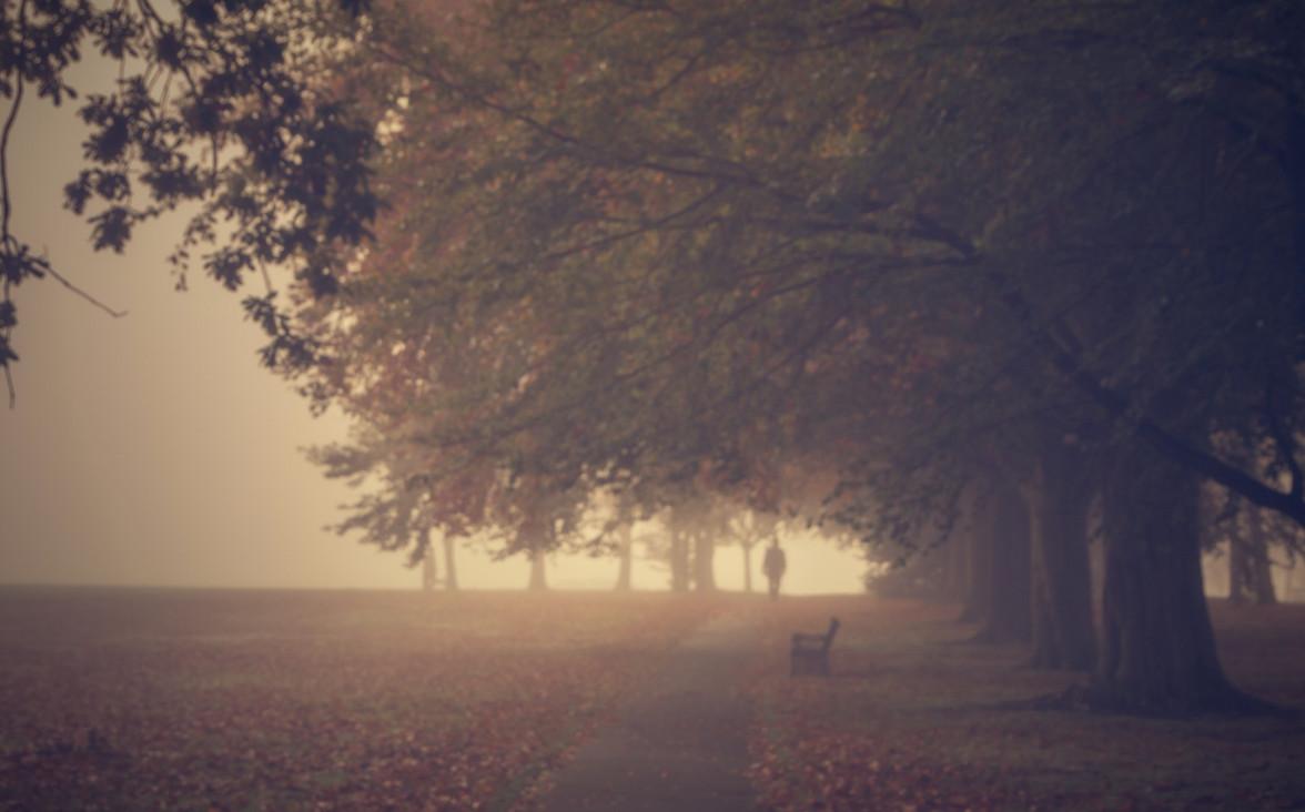 Автор фото: Chris Fletcher. Туман