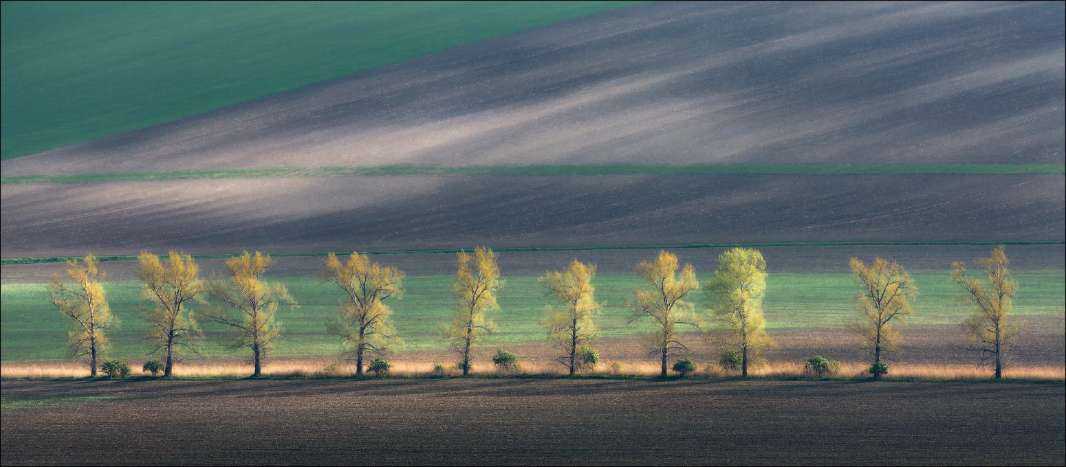 «LINE», автор фото: Влад Соколовский (участник Russian Photo Club)