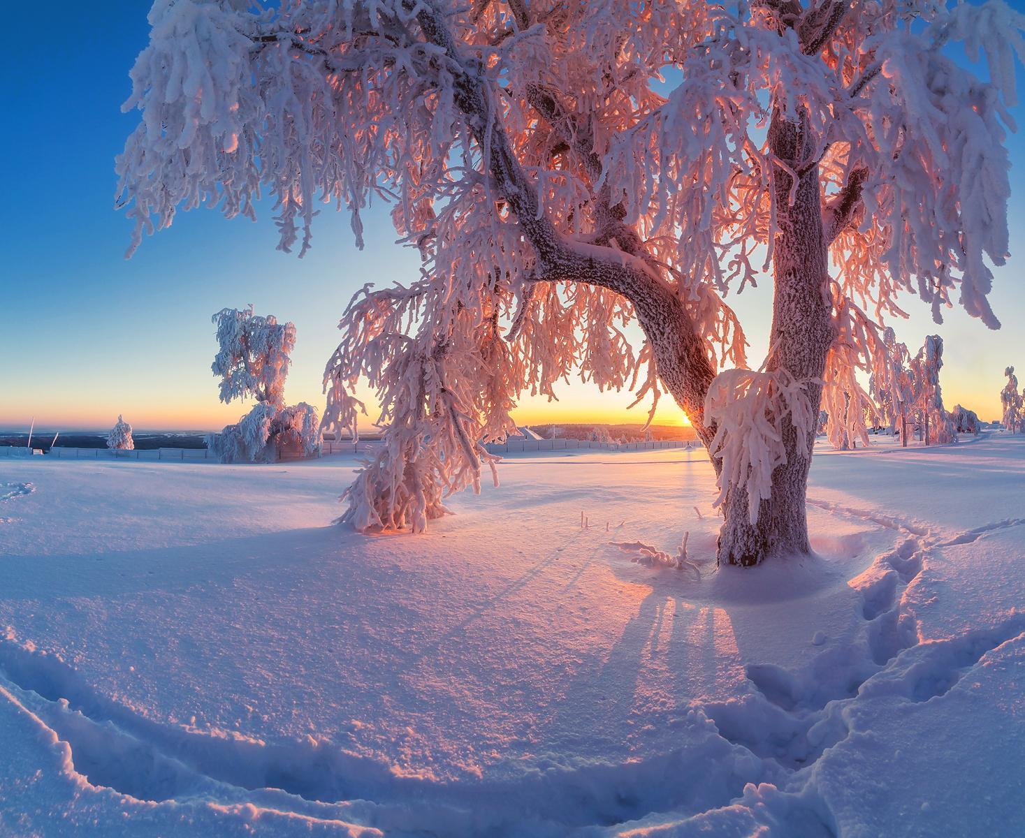 Белая гора. Фото: Сергей Сутковой