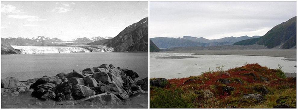 Carroll Glacier, Alaska. August, 1906 — September, 2003