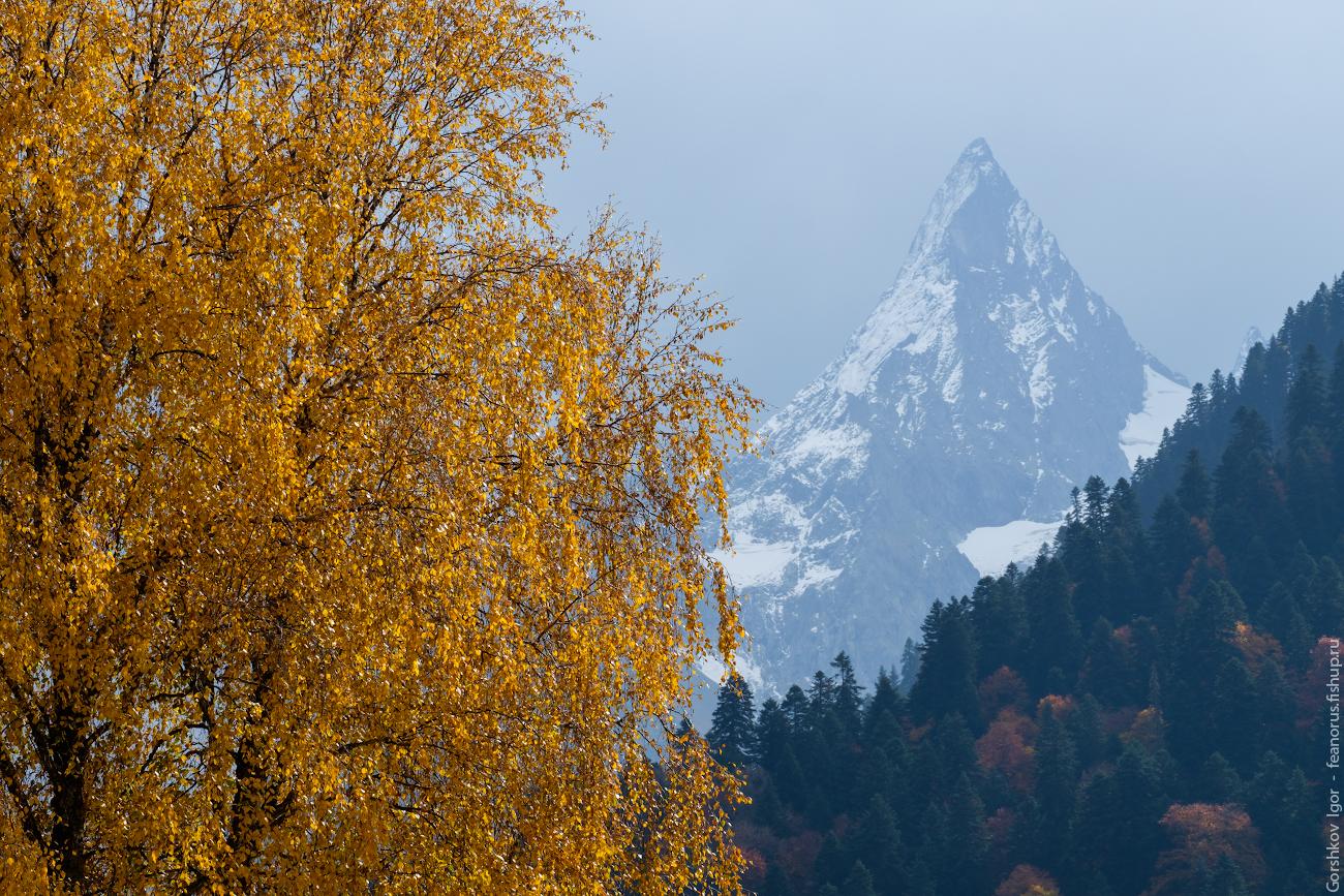 Золотая осень снежный человек картинки